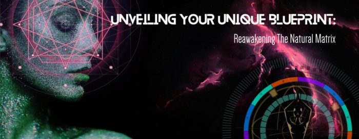 Unveiling Your Unique Blueprint 17 Week rePROGRAM